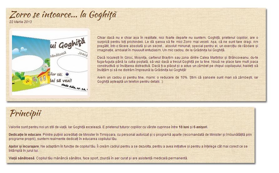 colaj_copy_goghita2